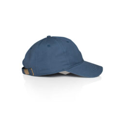 1111_DAVIE_SIX_PANEL_CAP_3 side