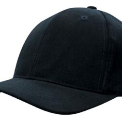 4141Brushed Heavy Cotton With Snap Back black